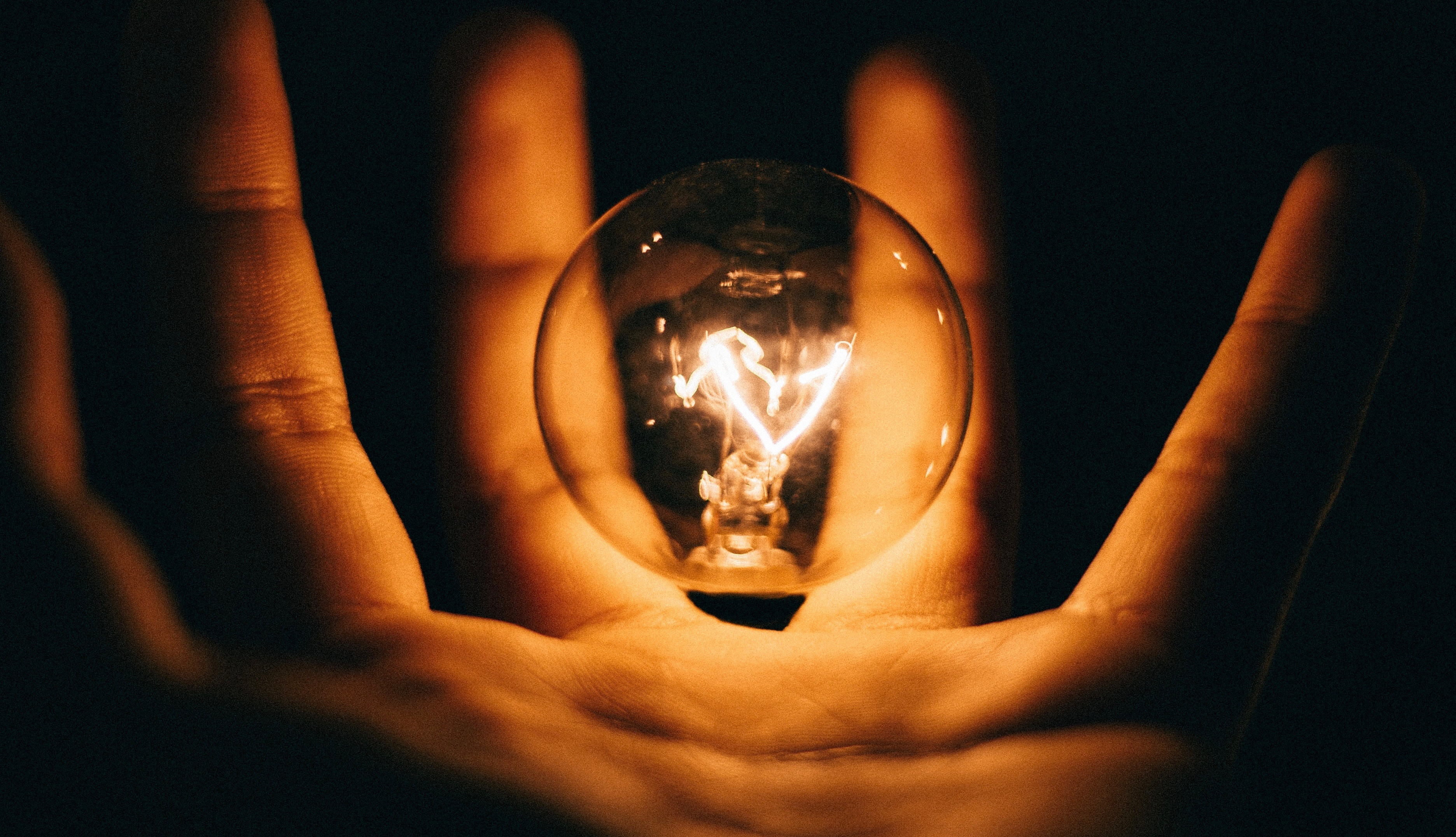 person holding lightbulb in palm of hand
